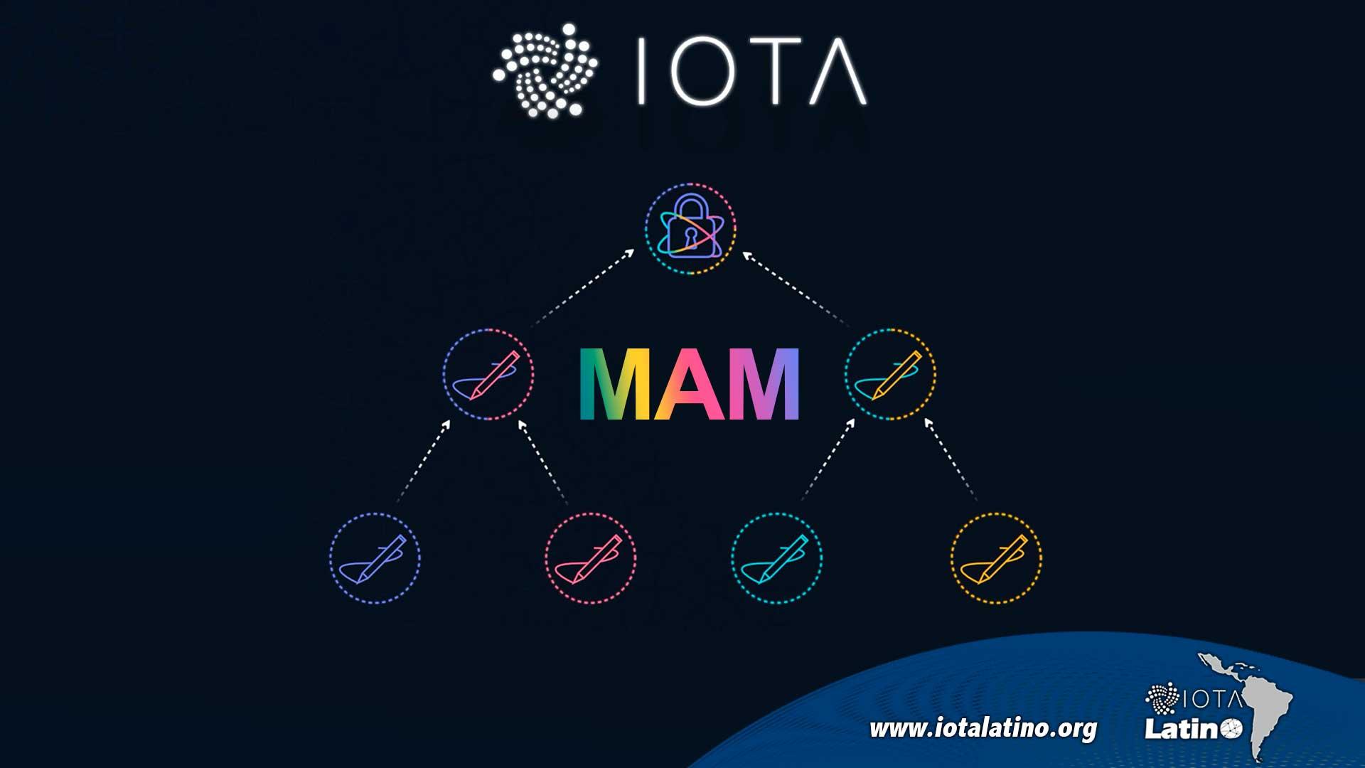 MAM de IOTA - IOTA Latino